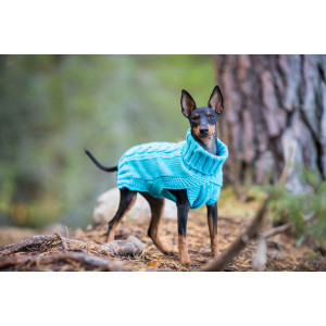 WOOLY SWEATER TURQUOISE